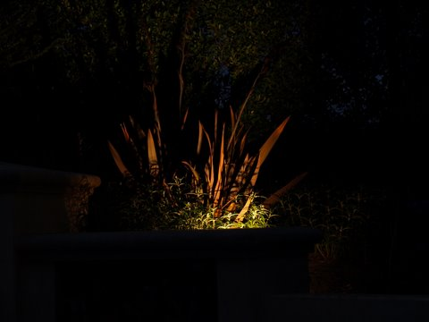 Agoura Hills Landscape Lighting Dramatic Lighting